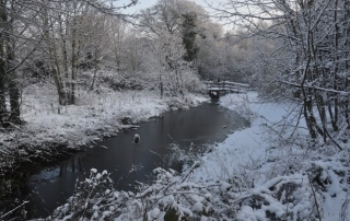 b1 Leighside pond snow
